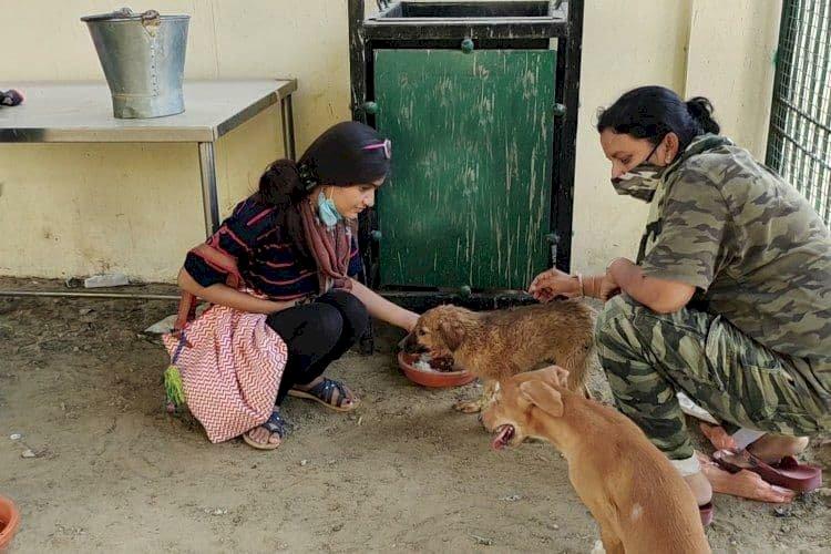 भूखे प्यासे  पशु— पक्षियों की मदद कर मिसाल बनी सिरोही की बेटी Nisha Gulabwani